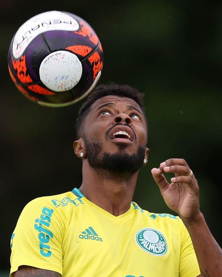Michel Bastos - Palmeiras 2017