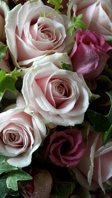 Dark Pink Lisianthus and White and Pale Pink Roses