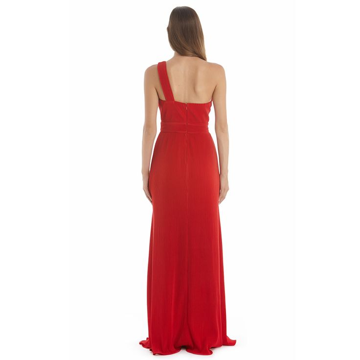 Langhem Dior Evening Gown