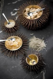 Sea urchin inspired