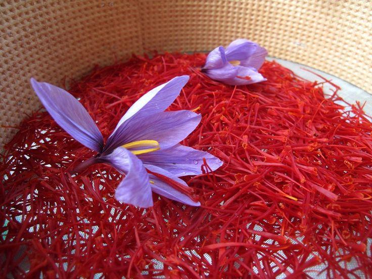 Saffron from Navelli (AQ)