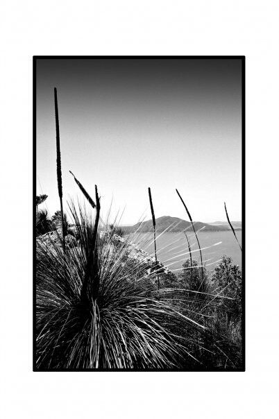 Passage Peak.  Hamilton Island.  Qld.