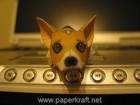 wag the dog essay