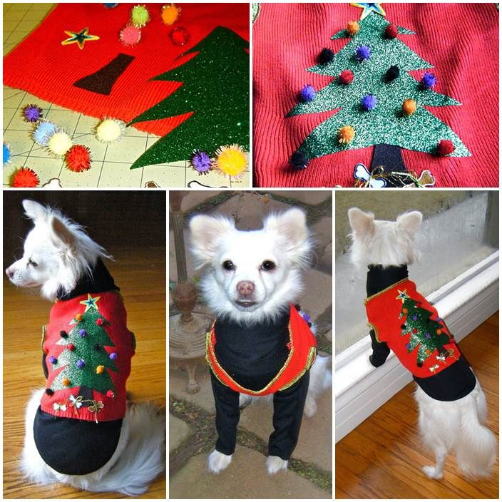 DIY Dog's Christmas Sweater Vest