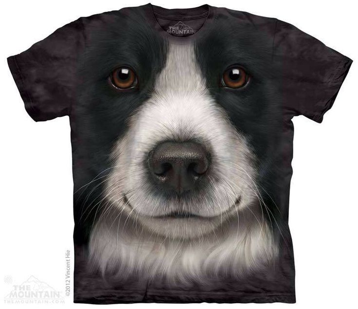 Do you like dogs? Tell us all about it, with the help of T-shirts with prints favorite breed! Awesome Border Collie Face T-Shirt Order now: http://prikid.eu/border-collie-face-t-shirt/ Shipping worldwide! #dog #pet #pets #puppy #Tshirt #PRIKID #3D #Collie #BorderCollie #border #breed #awesome #like #love #animals #animallook