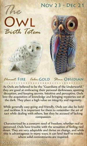 The Owl Birth Totem Nov 23-Dec 21