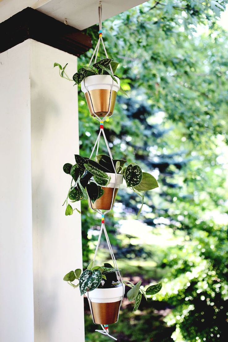 DIY: gold dipped hanging planters /// Cute and easy Plant Hanger!