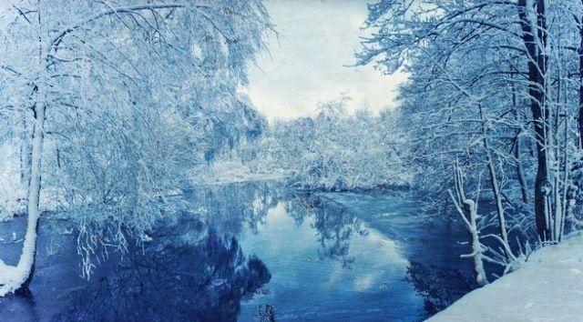 Stunning #snow #ice #trees #nature #winter #snowy