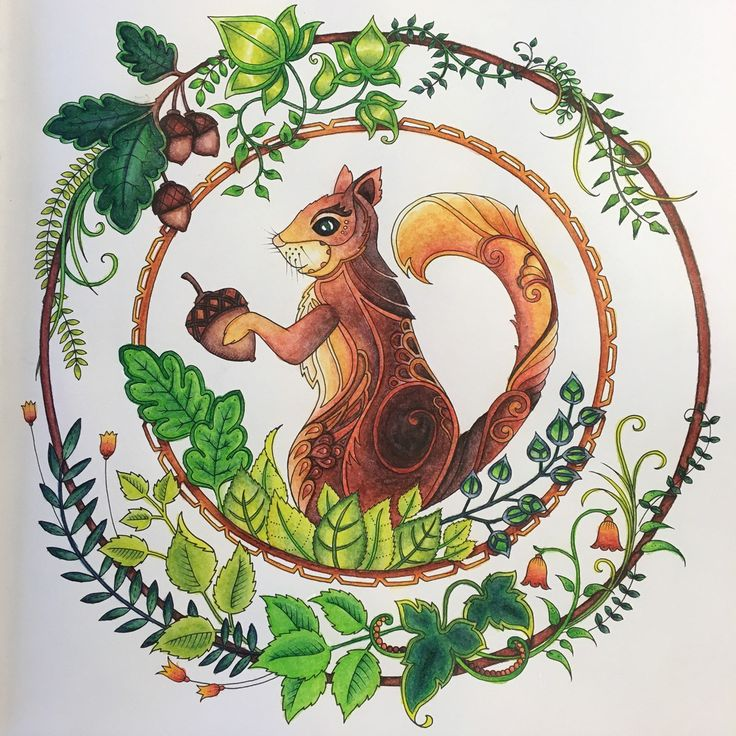107 Best Enchanted Forest Coloring Images On Pinterest