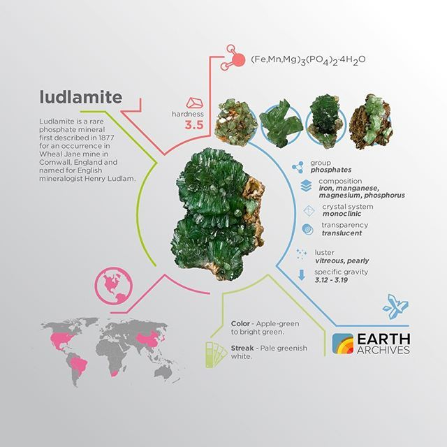 Ludlamite was first described in 1877 for an occurrence in Wheal Jane mine in Cornwall, England and named for English mineralogist Henry Ludlam. #science #nature #geology #minerals #rocks #infographic #earth #ludlamite