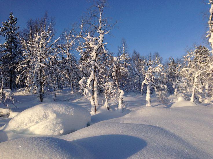 Vinter på Brokke