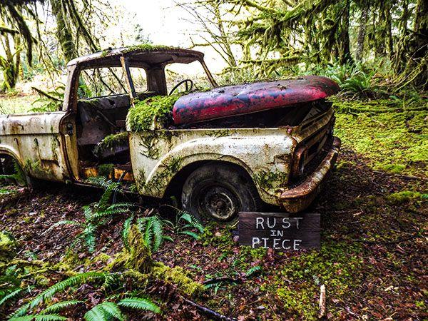 Rust In Piece on The Art Institutes Portfolios
