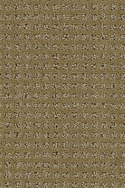 124 Best Carpet Images On Pinterest Patterned Carpet