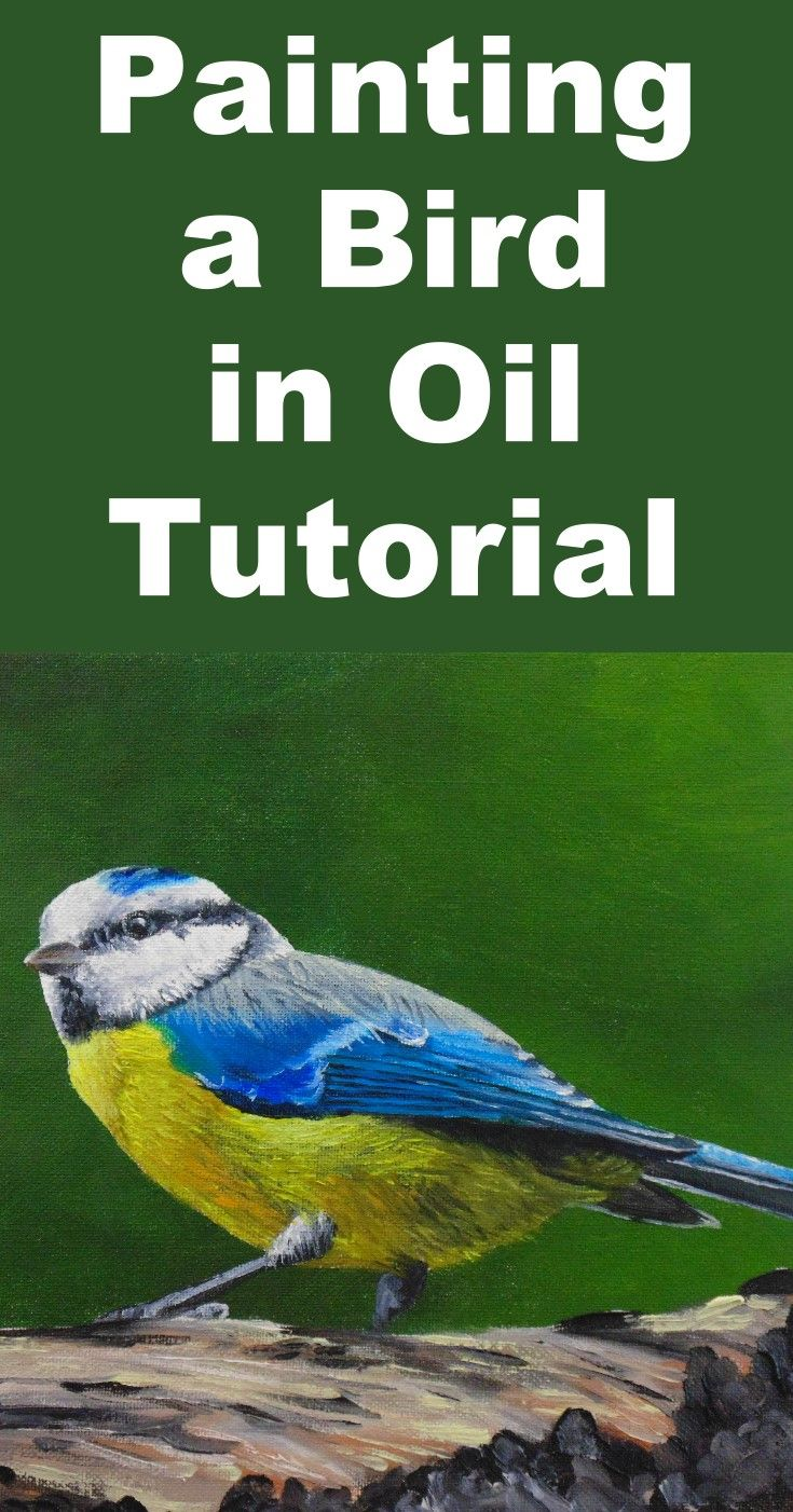 Learn how to paint realistic birds and feather effects in this free oil painting online art lesson