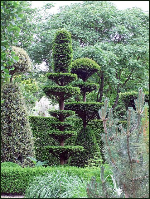 The best tended garden I've ever seen. Rooms of topiary beautifully designed and maintained. Jardin de Castillon, près de Bayeux by tordouetspirit, via Flickr
