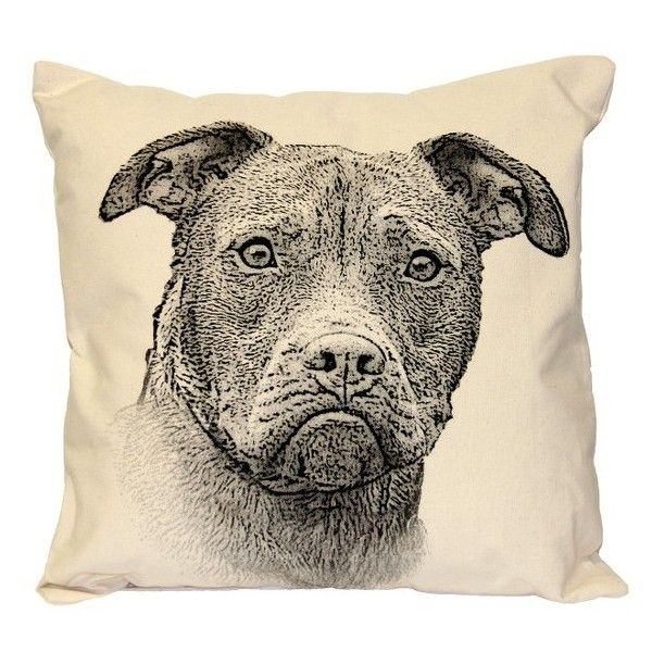 Eric & Christopher Animal Accent Pillow ($65) ❤ liked on Polyvore featuring home, home decor, throw pillows, pitbull, animal throw pillows, square throw pillows and whimsical home decor