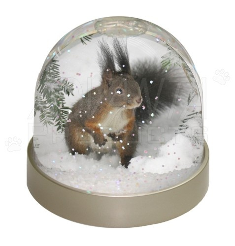Squirel Snow Globes - Bing Images