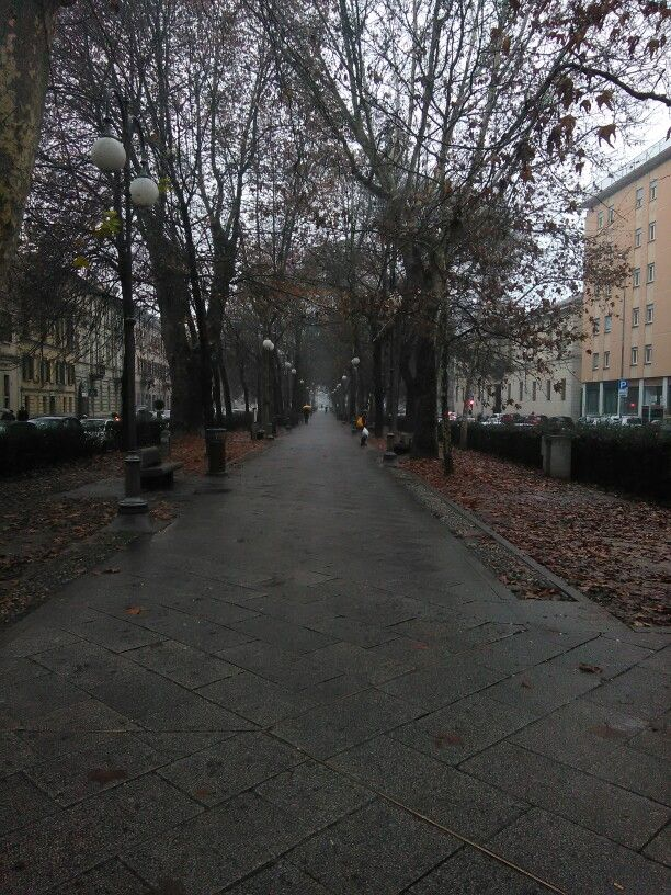 Inverno a Pavia