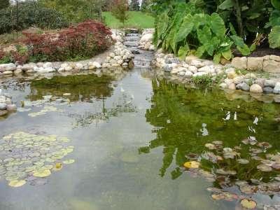 Fibreglass garden ponds brisbane pond pump pump in for Fishing ponds columbus ohio