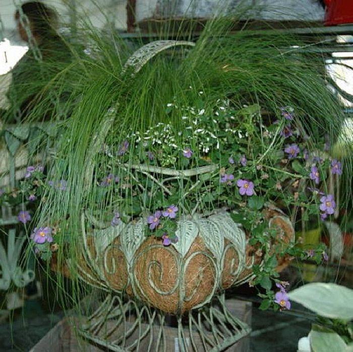 Container Flower Garden Ideas With An Attitude ~ Http://lanewstalk.com/