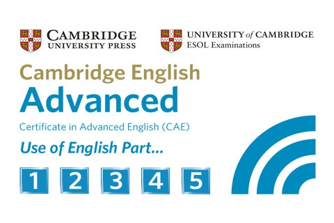 Prepare the CAE Use of English section with Live-English.net: http://www.live-english.net/en/english.php/2007/11/12/13-english-exams-preparation