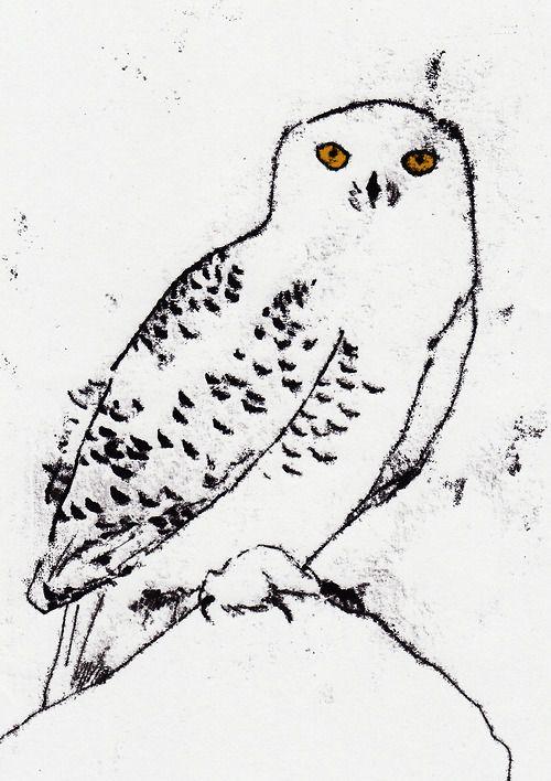 Snowy Owl mono print