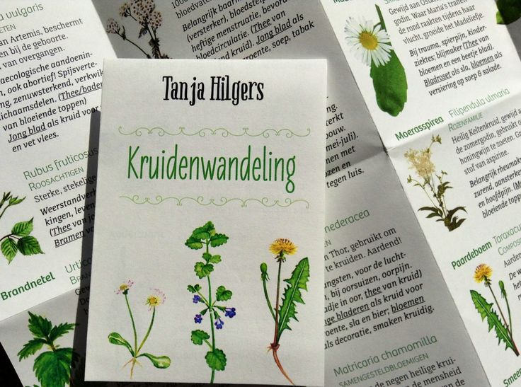 Kruidenbriefje als geheugensteun na een wandeling  Www.tanjahilgers.nl