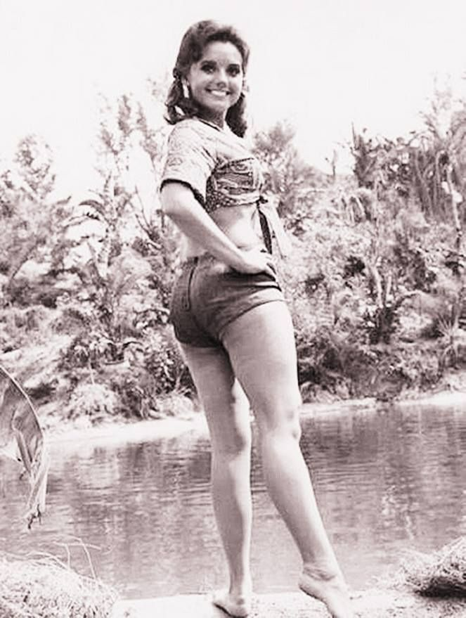 Dawn wells as mary ann opinion