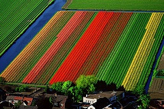 Yann Arthus-Bertrand   Earth from Above   ('la Terre vue du ciel')  Magnificent Aerial Photography