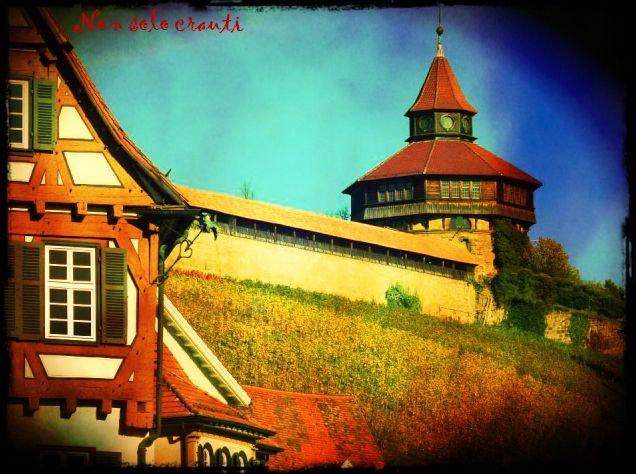 Nuove foto dell'autunno ad Esslingen.  www.facebook.com/… nonsolocrauti.blo… – Serena Italian Tutor