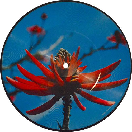 Precious, Single by Depeche Mode. Limited edition, numbered, picture disc. Collection of unusual, rare vinyl and unique colored collectible records.