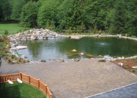 Part of the back yard that included a big paver patio ...