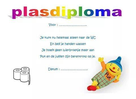 Plasdiploma Puk