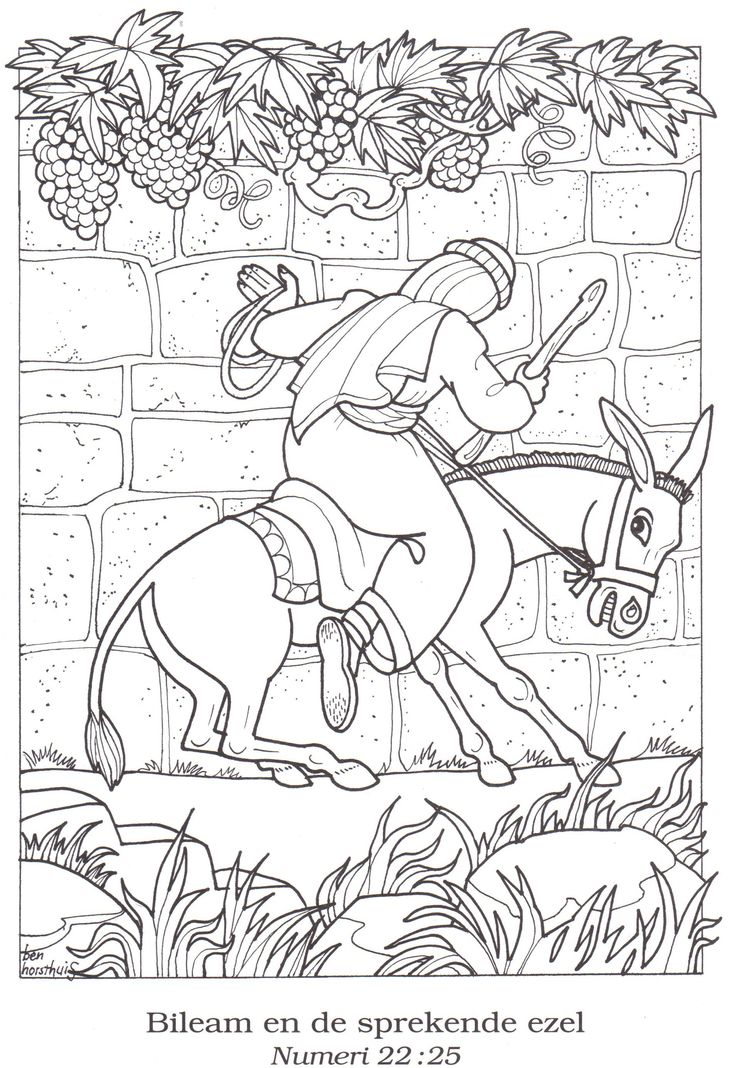 34 best Bible OT: Balaam and the Talking Donkey images on Pinterest ...
