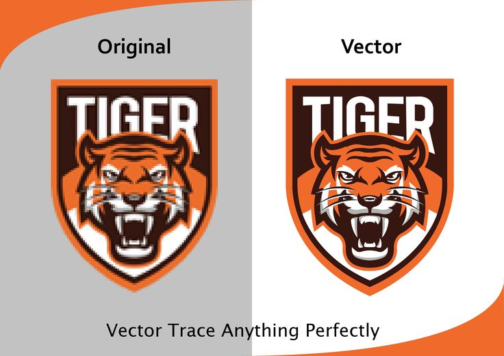 Vector Trace Anything Perfectly. Then see our gig  #vector, #convert #to #vector, #logo,#design,#art,vectortrace