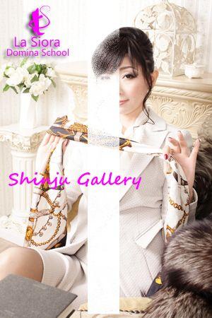 Shinju Gallery / SHINJU
