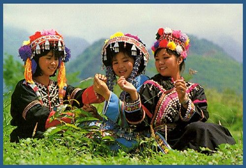 hmong people Miao: miao, mountain-dwelling peoples of china, vietnam, laos, burma, and thailand, who speak languages of the hmong-mien (miao-yao) family miao is the official chinese term for four distinct groups of people who are only distantly related through language or culture: the hmu people of southeast.