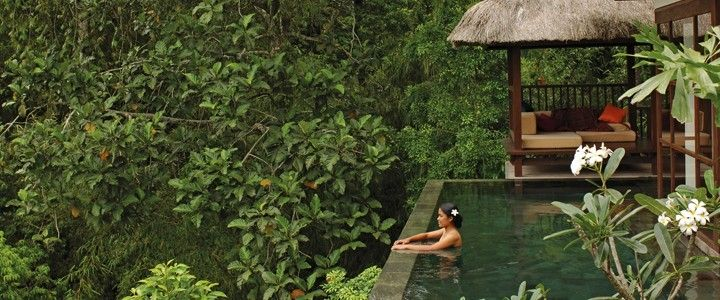 Just need Swimsuit, a cup of coffee and a book, I'm happy! :)). Ubud Hanging Gardens, Bali