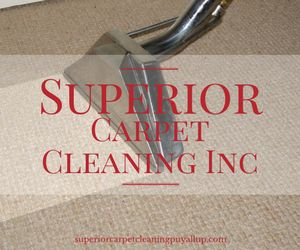 Carpet Steam Cleaning in Puyallup, WA Upholstery Cleaning in Puyallup, WA Air Duct Cleaning in Puyallup, WA Tile and Grout Cleaning in Puyallup, WA Pet Stain and Odor Removal in Puyallup, WA Carpet Stretching and Repair in Puyallup, WA House Cleaning Move in/out in Puyallup, WA Roof and Gutter Cleaning in Puyallup, WA Pressure Washing in Puyallup, WA Free Estimate Cleaning in Puyallup, WA Emergency Service 24/7 Water Extraction in Puyallup, WA Carpet Re-Stretching and Repair in Puyallup, WA