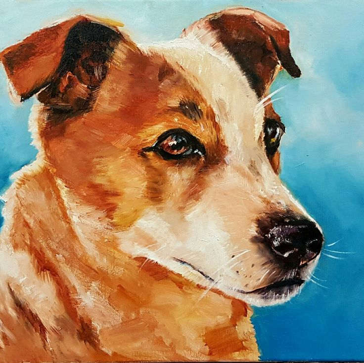 Buddy ❤ oil painting