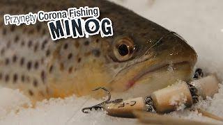 Przynęty Corona Fishing - Wobler łamany na pstrąga - Minog #wędkarstwo #przynęty #filmywędkarskie https://www.youtube.com/user/CoronaFishing/videos