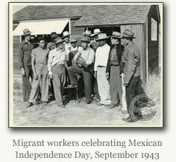 mexican migrant workers essay The polictis of immigration and migrant workers essay examples 1205 words 5 pages politics, defined as organized control over a human community, subsists in all convivial levels, in the state of california.