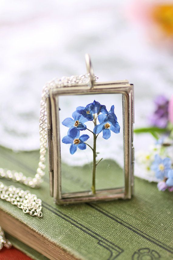 A tiny posey of forgetmenots, a keepsake from of the first days of summer have been captured inside a glass locket to make this sweet botanical