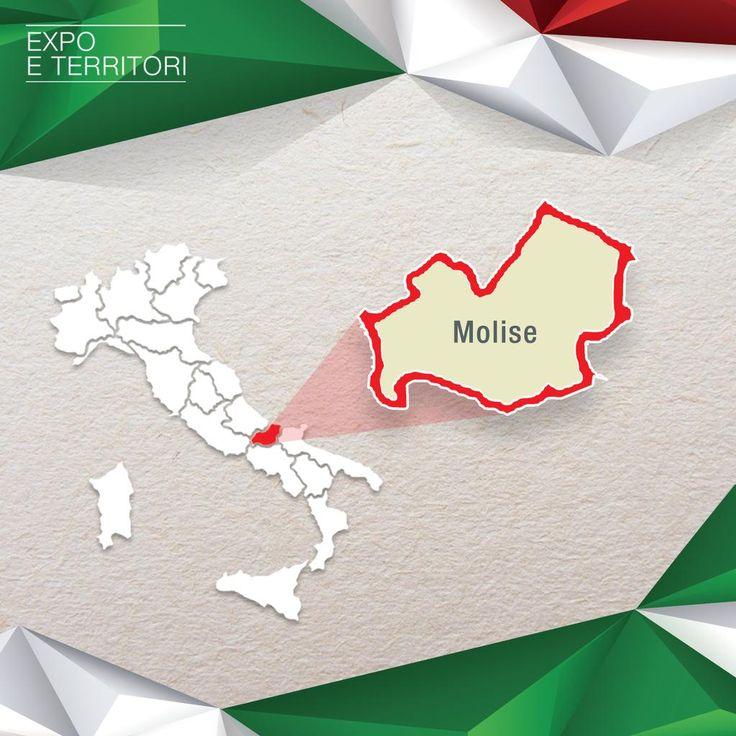 #MoliseToExpo
