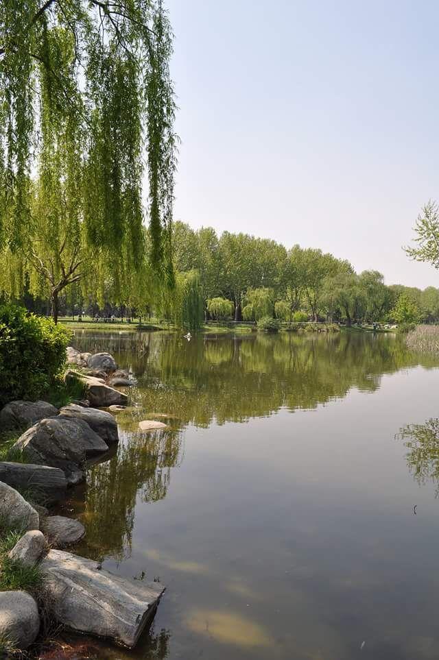 Photograph Pond by burak karaca on 500px