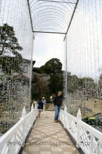 Glass Museum Hakone, Jepang  - 4 Hari Wisata Di Hakone (bagian 2)- Edisi Liburan di Jepang Day 8 to 11