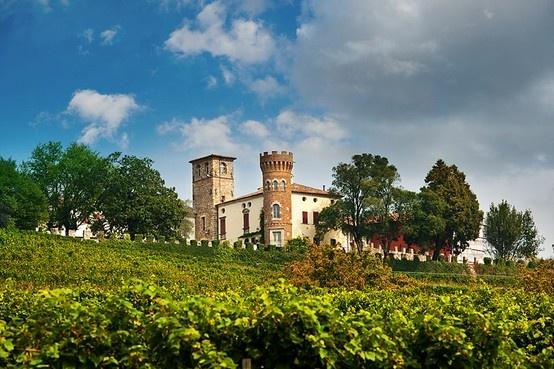 TASTE THE WINE. Il fascino dei vini del Friuli ai Salotti del Gusto dell'Alta Badia. Grazie al CASTELLO DI BUTTRIO
