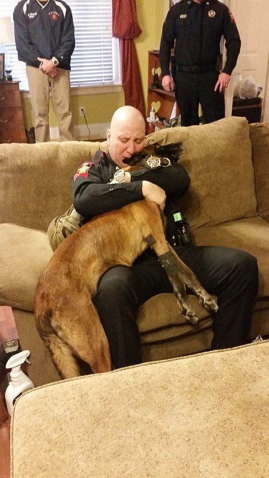 Powerful Photo Shows Cop Saying Goodbye To His K-9 Partner One Last Time