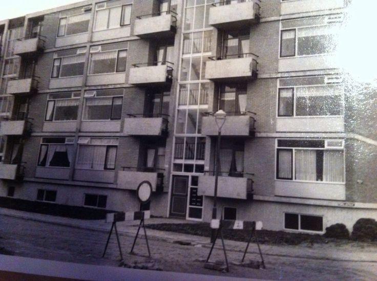 Primulastraat in Vlaardingen. 1955 ?