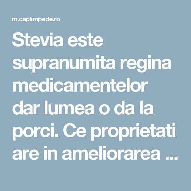 Stevia este supranumita regina medicamentelor dar lumea o da la porci. Ce proprietati are in ameliorarea diabetului si osteoporozei? – Cap Limpede